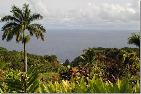Maui 395