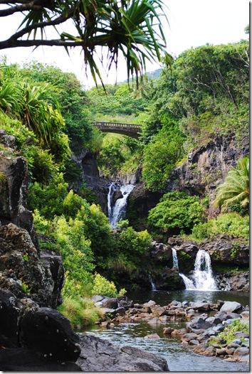 Maui 484